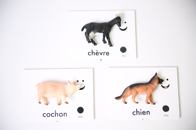 Pictogramme tactile animaux